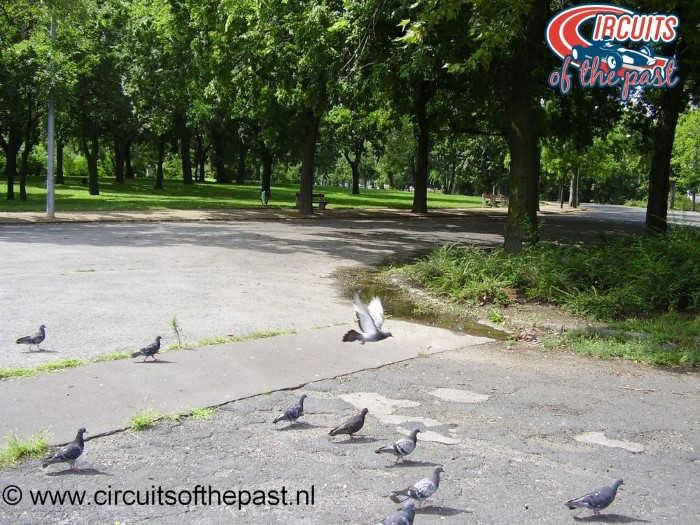 Het stratencircuit in Népliget Park, Boedapest